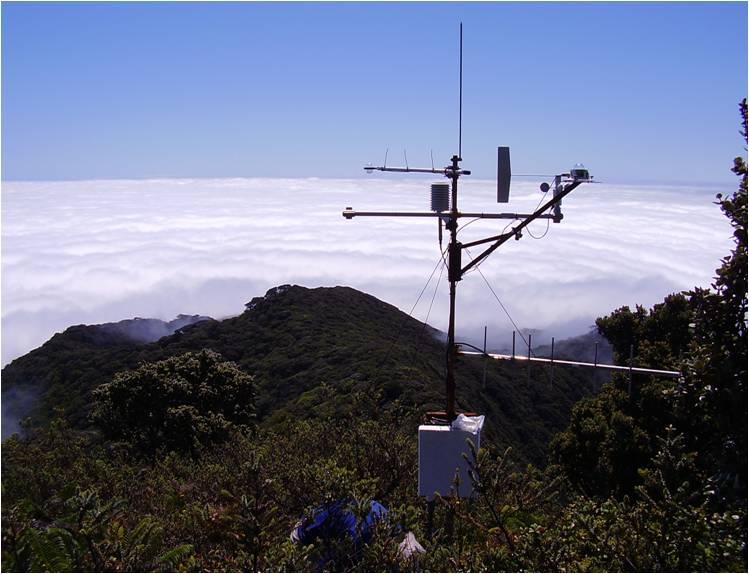 HaleNet's Treeline Station, Maui