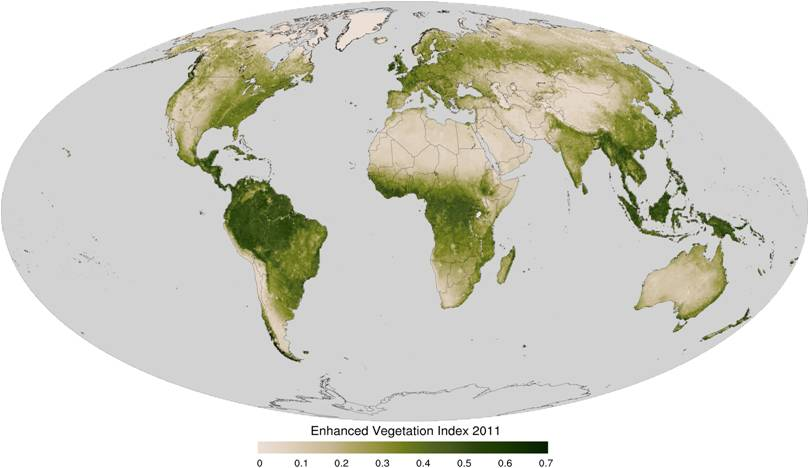 Enhanced Vegetation Index