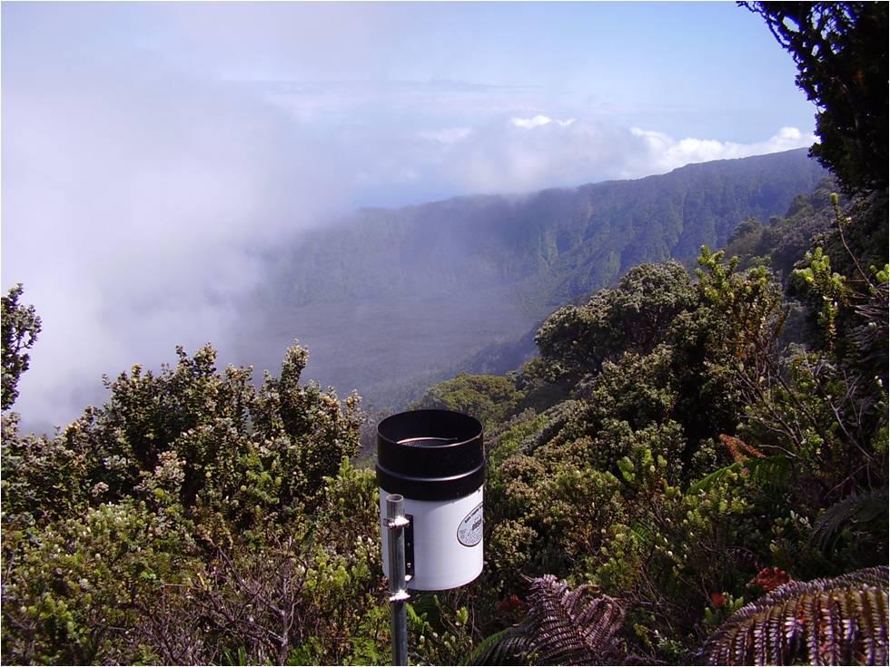 Raingage Maui
